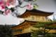 [OFFICIAL] Sony Xperia Z3 C... - ultimo messaggio di billyg