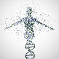 Foto di Genome
